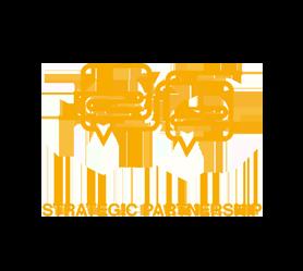 strategic partnership v2